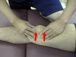 Style1 膝関節スペシャルテスト